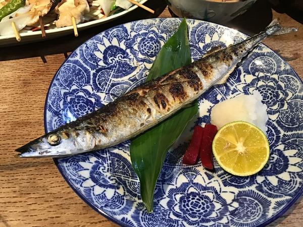 ◆11/4秋刀魚