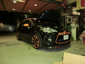 DS3R-2
