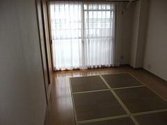 2011_0407_154853-DSCF5609