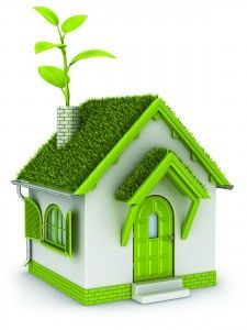eco-house-225x300