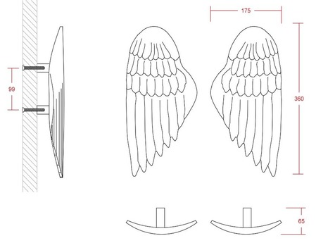 Angel Wing size