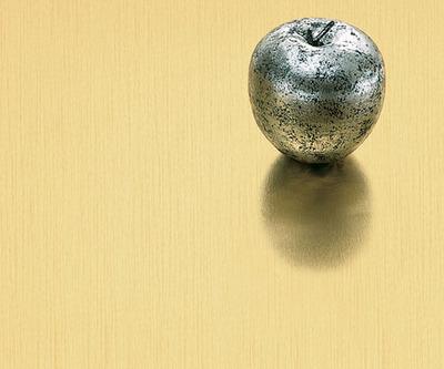 904-brushed-light-brass-aluminum
