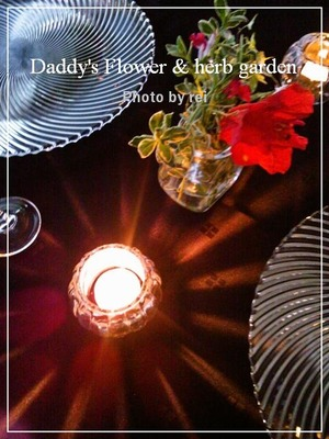 daddy's Flower & herb garden