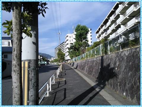 44bc0129.jpg