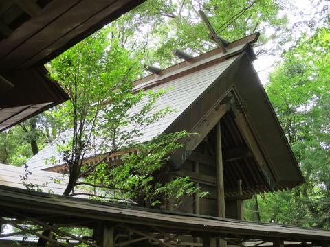 式内社・稲村神社(いなむらじんじゃ)画像