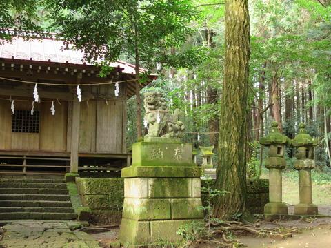 胸形神社(むなかたじんじゃ)画像