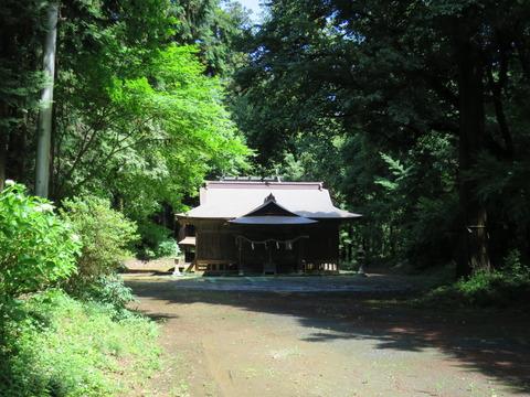 式内社・大井神社(おおいじんじゃ)画像