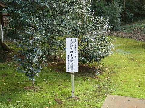 式内社・子安神社(こやすじんじゃ)画像