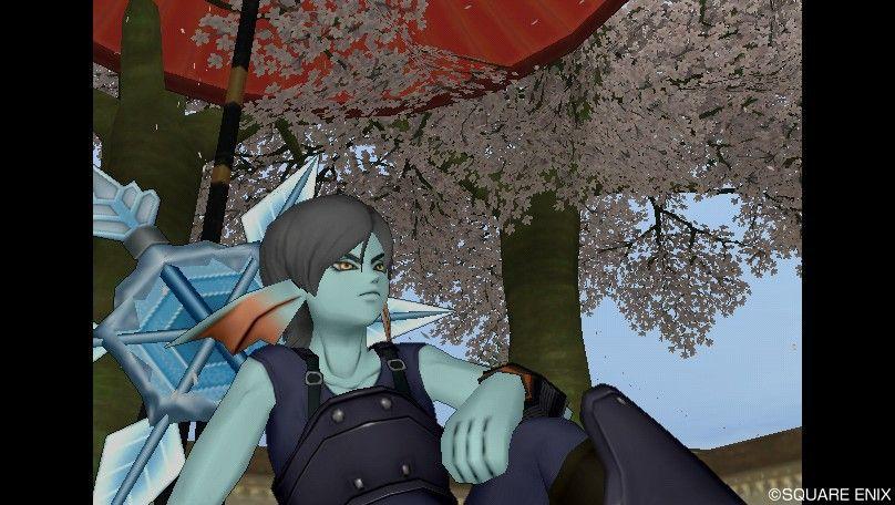 庭模様・桜模様