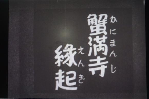 DSC05980 - コピー