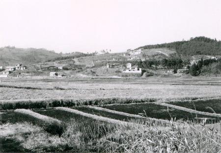 平沢の分譲地(1965)web