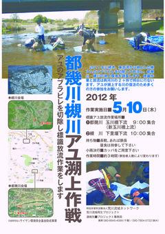 2012年0510放流チラシ