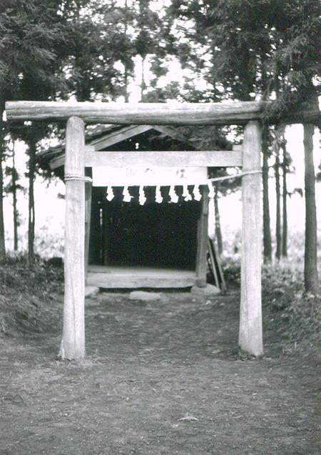 日吉神社6web