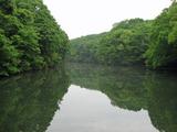 川後岩沼2006年5月web