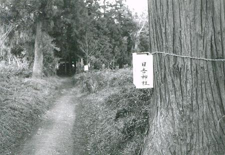日吉神社4web