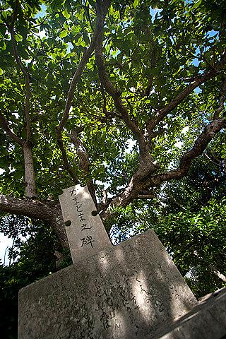 0720-107 かまどまの碑(西表島・船浮)