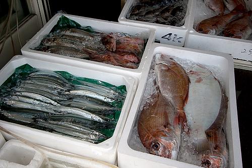 観光情報センター横の魚屋(鞆の浦)