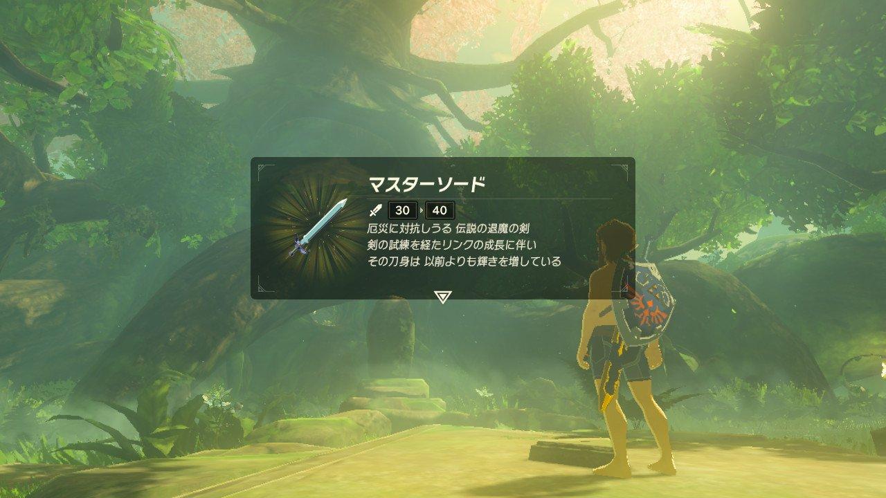 剣 伝説 試練 ワイルド の の ブレス オブザ ゼルダ
