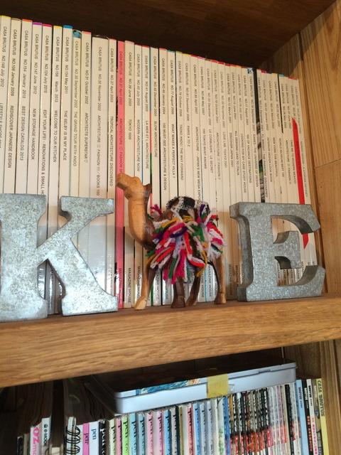 本棚を行くラクダ