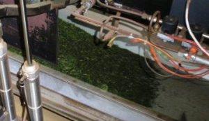 お茶工場111