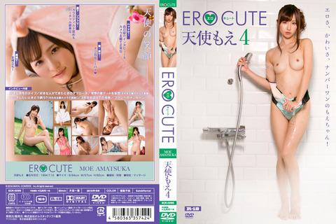 ECR-0095_02