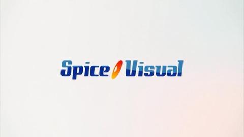spicevisuial