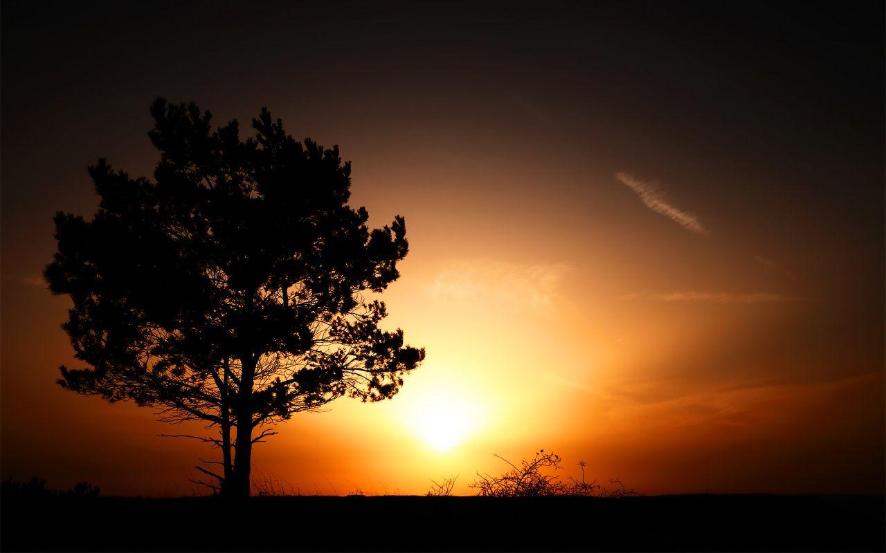 sunrise-1280x800