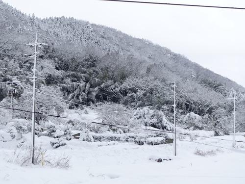 雪 鳥取市