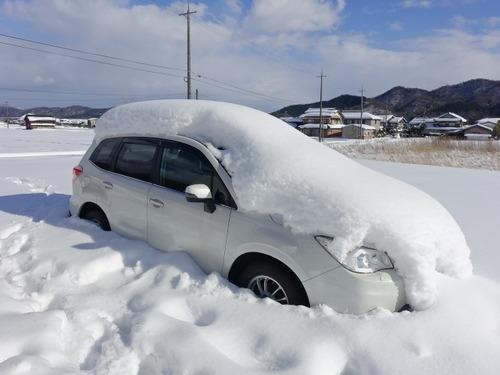 雪 フォレスター