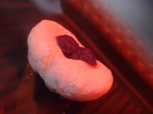 焦がしチョコボールキャラメルのお餅