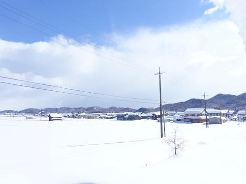 鳥取 大雪