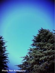 青いです。