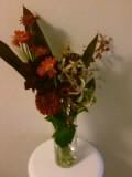 070726_赤花