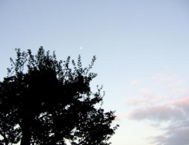 京都の夜空