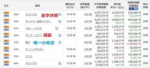 絶望の日本株ポートフォリオ