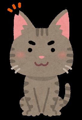 cat_sakura_cut_male