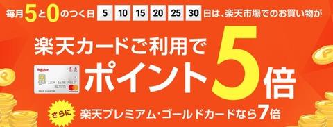 【5の付く日】ポイント倍増!「楽天市場」で買い物してストレス解消!