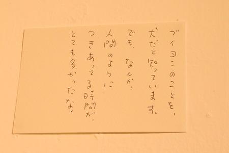 IMG_6407
