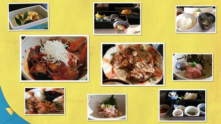 collage_photocat5