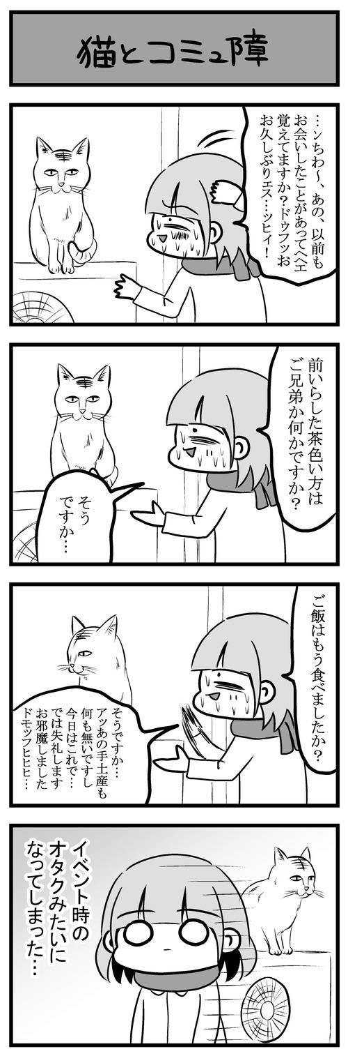 猫とコミュ障