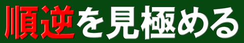 笹松6-2