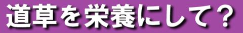 沢田2-2