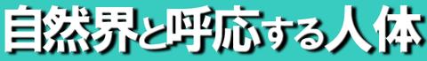 村井6-2