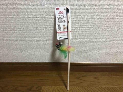IMG_9011