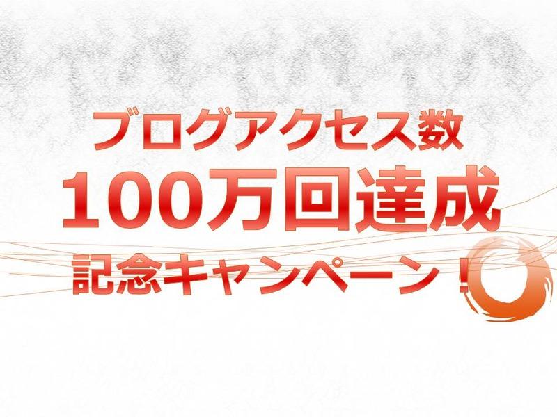 ブログアクセス100