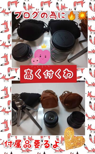 CollageMaker_20200831_060545803