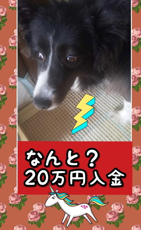 CollageMaker_20200520_084636336