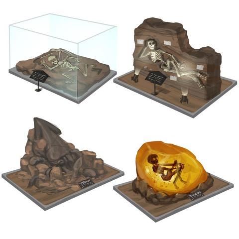 museum_fossils