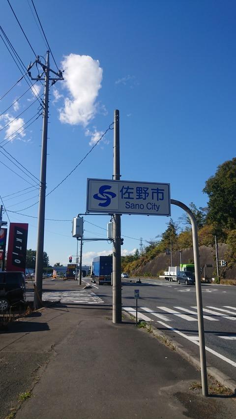DSC_2531