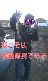 a4d15b0f.jpg